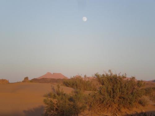 Luna llena en el desierto